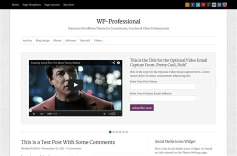 premium theme wp professional wordpress professional theme