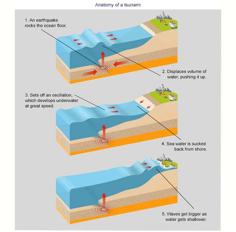 a diagram of a tsunami anatomy of a tsunami abc news australian broadcasting