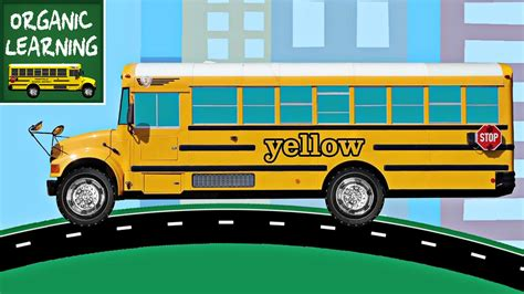 color of school buses school buses teaching colors learning colours for