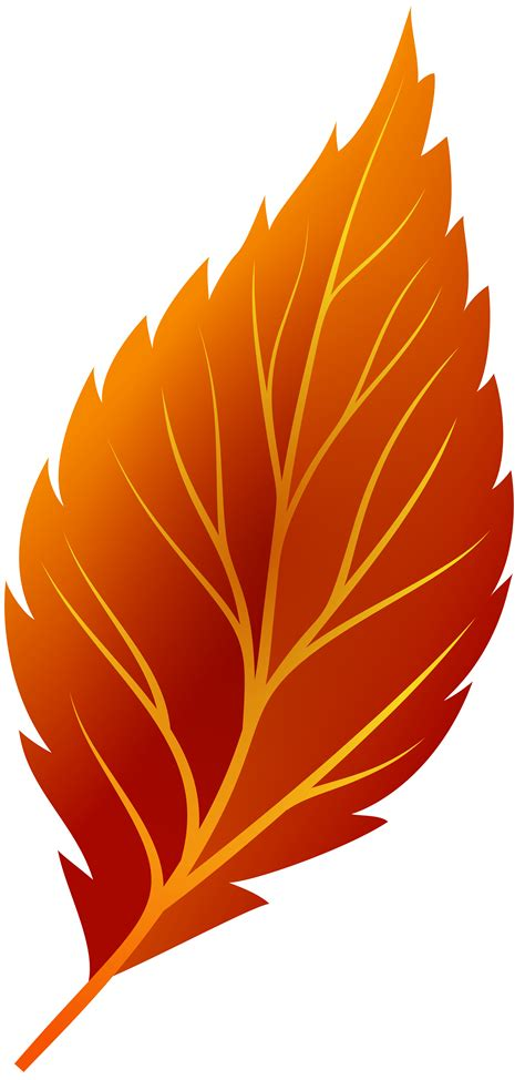 clipart png clipart leaf png collection