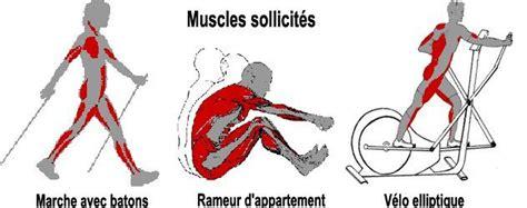 Tapis De Marche Nordique by Muscles Sollicit 233 S En Marche Avec B 226 Tons Rameur D