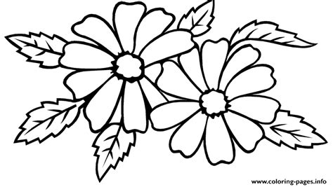 coloring pages of jasmine flower jasmine flower sf27a coloring pages printable