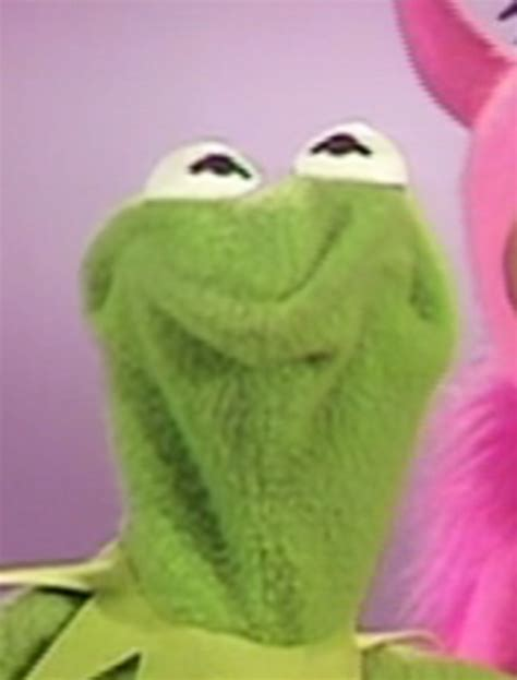 Frog Face Meme - teeheehee kermit the frog know your meme