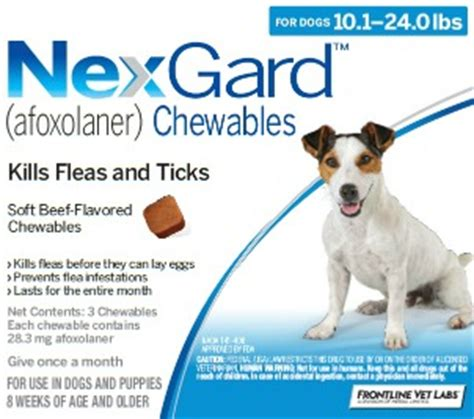 flea and tick pill picking a flea tick medication for your pet dr