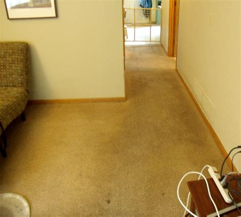 minneapolis rug cleaning carpet cleaning pictures rochester mn