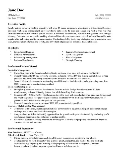 financial accounting resume sles professional international finance director templates to