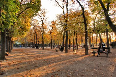 jardin in paris an autumn must in paris walks in the luxembourg and