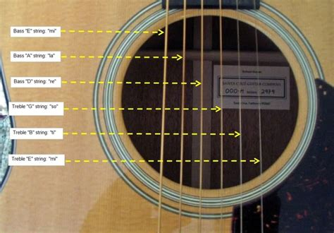 String For Beginners - notes of the acoustic guitar
