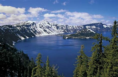 Cute Trees by Crater Lake National Park P O Box 7 Crater Lake Oregon