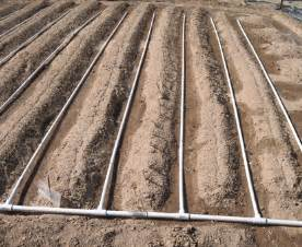 Backyard Irrigation Systems How To Build A Drip Irrigation System For Under 100 Eco