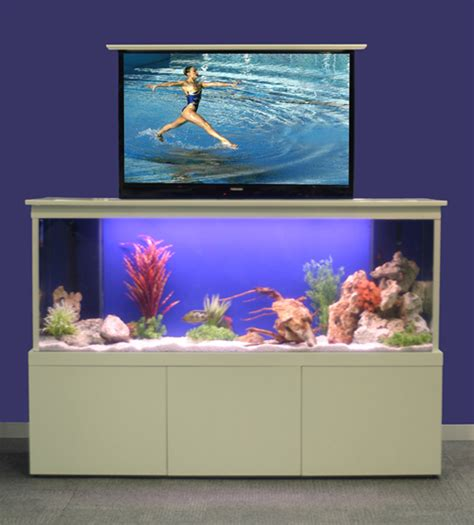 fish tank couch never leave your couch again reefs com