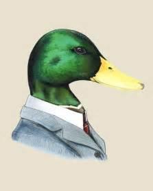 mallard duck art print 8x10 by berkleyillustration on etsy