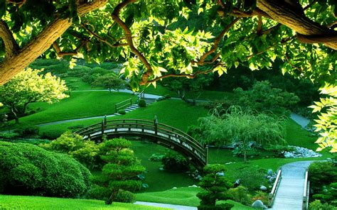 Green Japanese Wallpaper | garden wallpapers best wallpapers