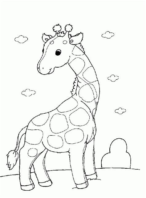 imagenes jirafas para pintar dibujos de jirafas dibujos para pintar y colorear gratis