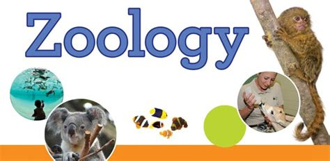 top zoology quizzes trivia questions answers proprofs quizzes