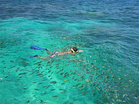 best koh lanta snorkeling thailand adventures easy day thailand tours