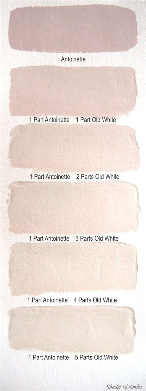 blush paint color pin by whitney adkins on art pinterest paint colors