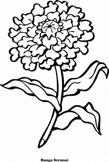 desain bunga hitam putih mewarnai gambar bunga serunai contoh anak paud
