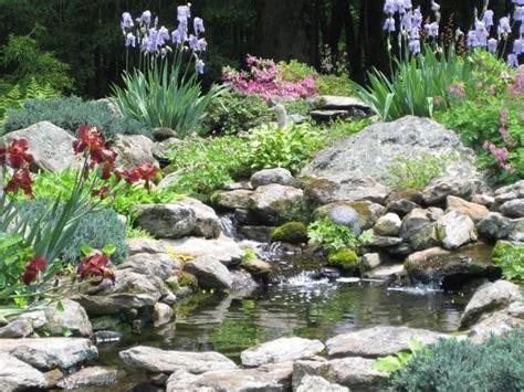 Rock Garden Watertown Ct 58 Best Images About Water Gardens On Pinterest Gardens Pond And Waterfalls