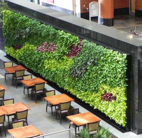 interior garden wall 25 best ideas about vertical garden design on