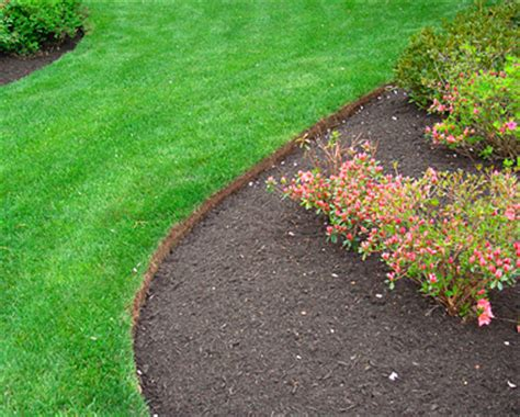 Cheap Garden Edging by Cheap Driveway Edging Ideas Quotes