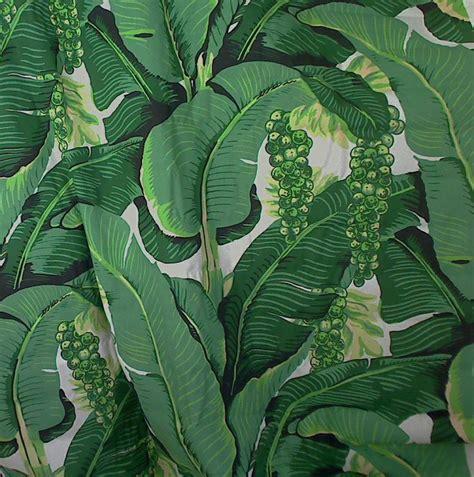 banana palm wallpaper australia tropical leaf wallpaper wallpapersafari