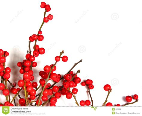 christmas decorations with berries berry decorations www indiepedia org