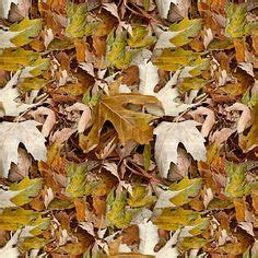 fallen leaves film 1000 images about patterns that are great as custom