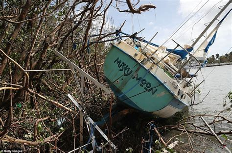 hurricane irma and boats florida dealing with hurricane irma aftermath daily mail