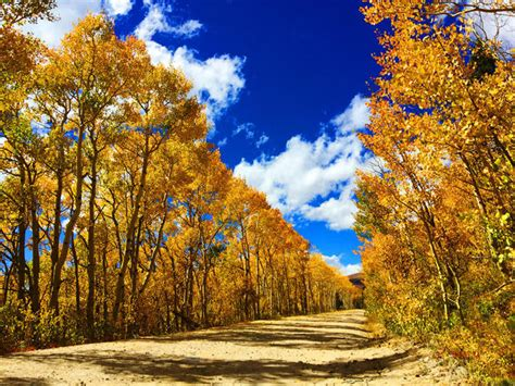 colorado fall foliage 2016 pictures cbs news