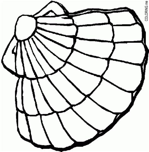 oyster shell coloring page coloring pages