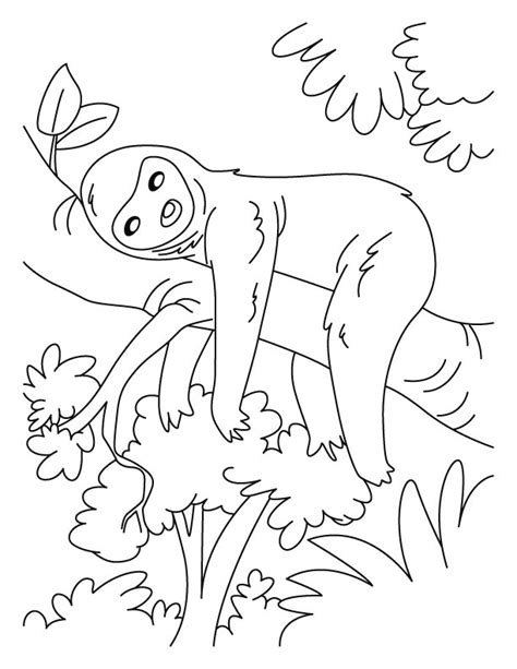 cute jungle tree coloring pages