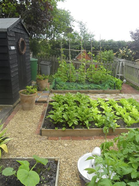 Cottage Vegetable Garden Dickson S Cottage Garden In Suffolk The Tree