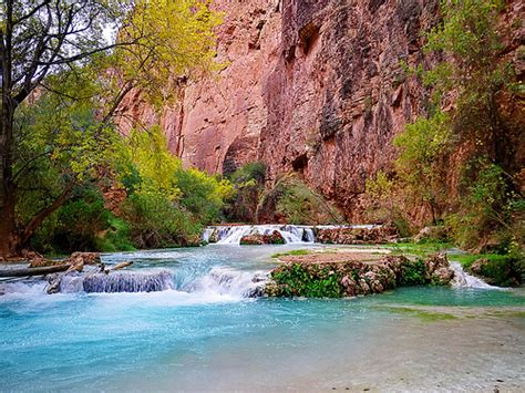 grand canyon rope swing cost 6604512525 d0bb4aec10 z jpg