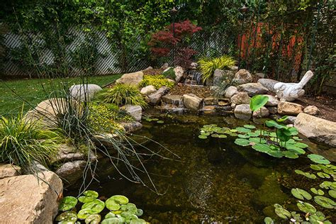 Landscape Small Backyard by 53 Backyard Garden Waterfalls Pictures Of Designs