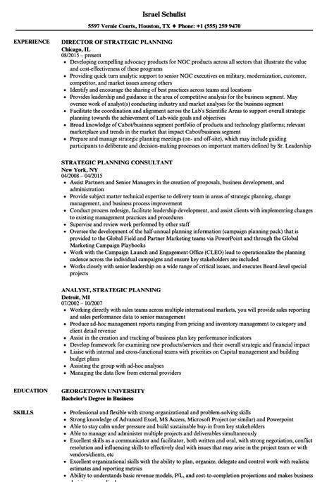 strategic planning resume exles strategic planning resume sles velvet