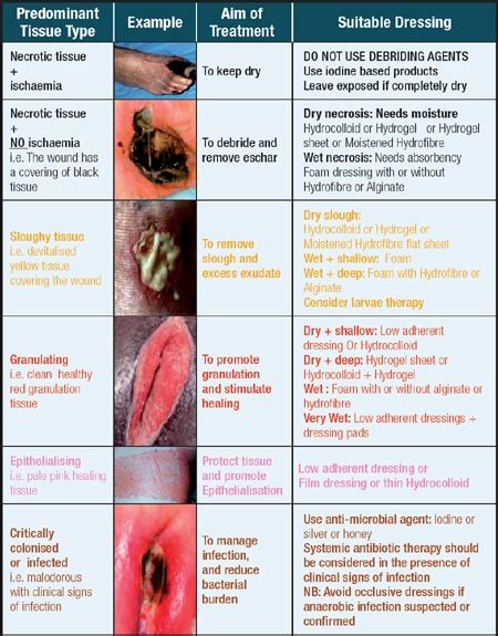 wound chart template wound treatment charts warning don t view if you re not