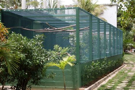 aves en el patio aviary designs cage and aviary ideas pinterest bird
