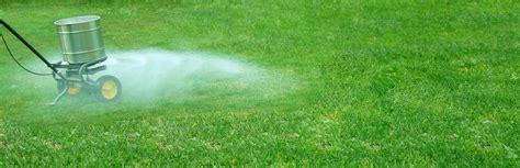 best lawn fertilizer the top 5 best lawn fertilizers
