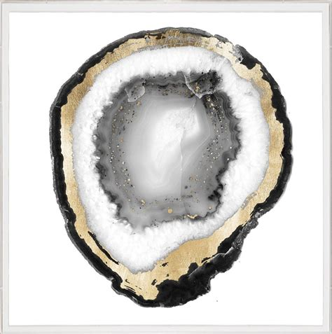 natural curiosities black  white geode