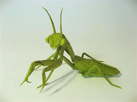 Origami Mantis - 2872770566 47d71610c3 z jpg zz 1