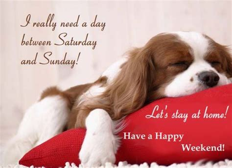 lazysunday mothersday happy weekend love laugh