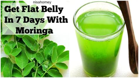 Green Detox Diet by Moringa Green Detox Diet Drink Moringa Facts