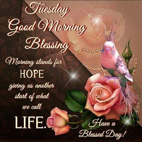 imagenes de good morning tuesday tuesday good morning blessing pictures photos and images