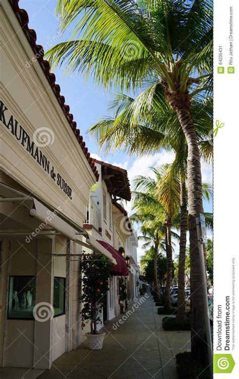 the most beatiful palm avenue worth avenue in palm beach florida editorial photo