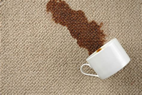 rug stains carpet cleaning mistakes to avoid stero carpet cleaning