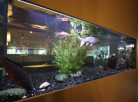 Lukisan Koi Big Myy 12 image gallery koi aquarium