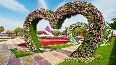 Garden Flower Images Garden Flower Hd Wallpapers