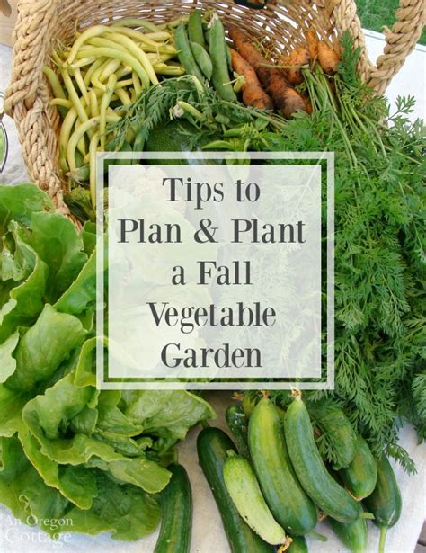 Tips To Plan And Plant A Fall Vegetable Garden Fall Garden Vegetables