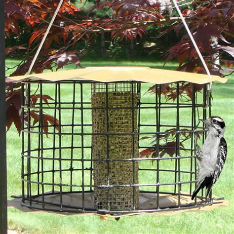 baffled cage squirrel proof starling resistant bird feeders